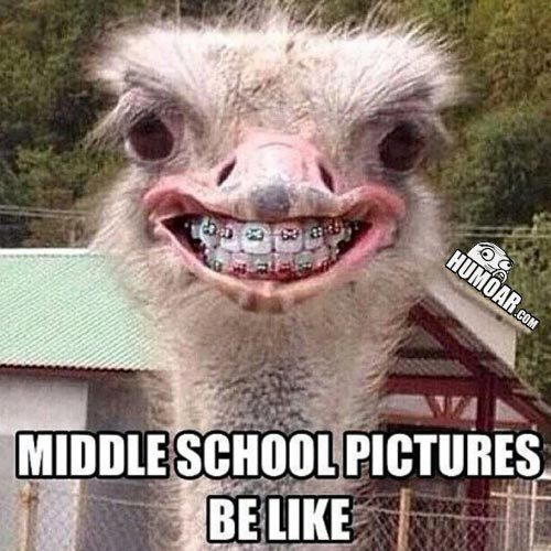 Middle School Pictures Humor