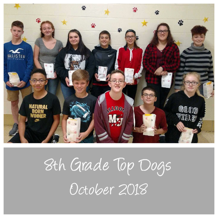 8th October Top Dogs