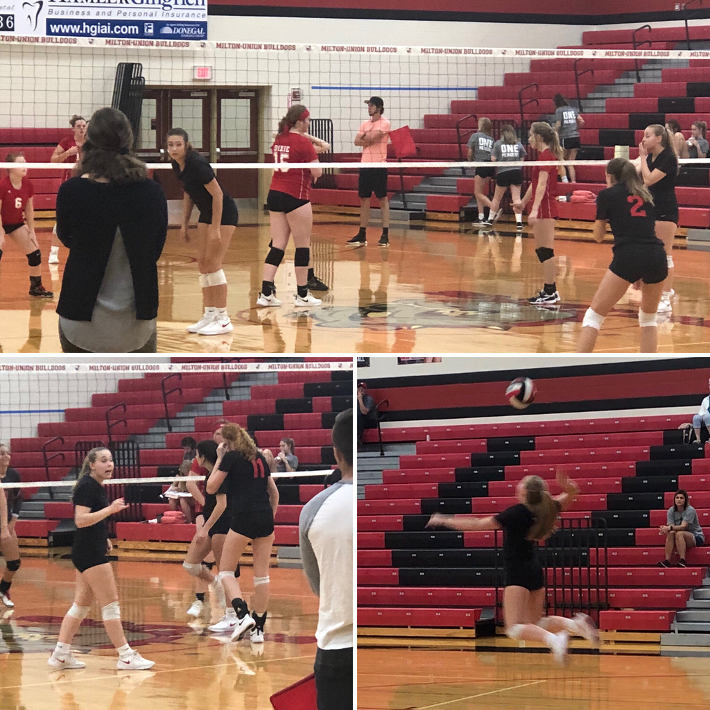 Bulldog Volleyball versus Dixie - 9.19.19