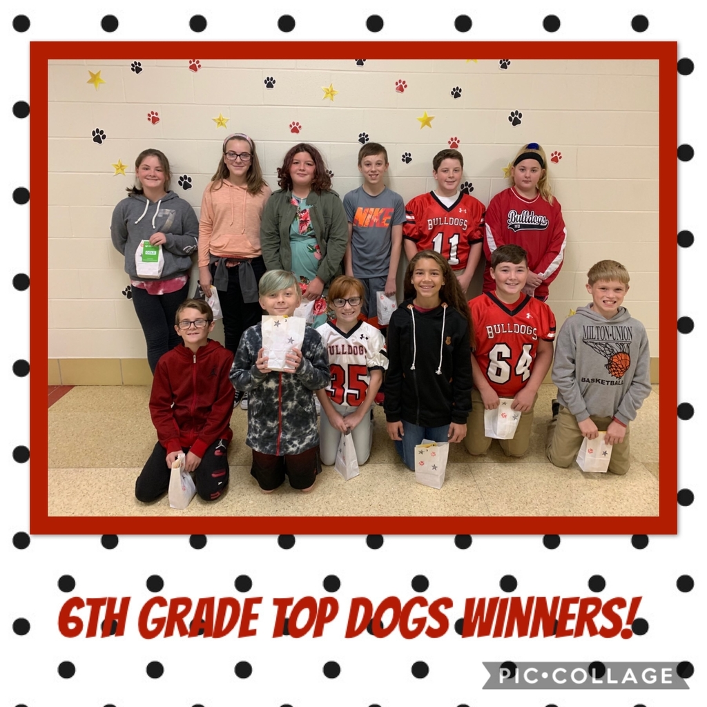 6th Top Dogs winners