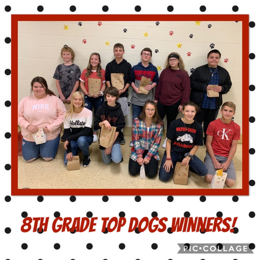 8th Top Dogs winners