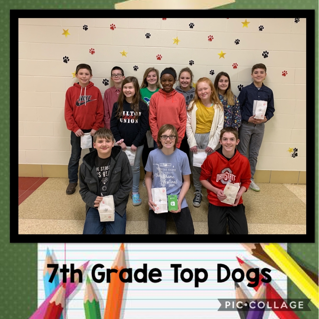 7 Top Dogs